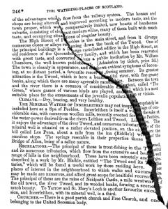 La numérisation low-cost résulte sur quelques loupés (disponible sur un Tumblr the «art of google books»)